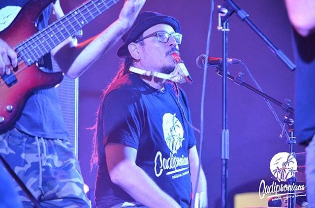 Alvaro Proffesor